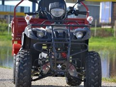 ATV Big Dog K-9